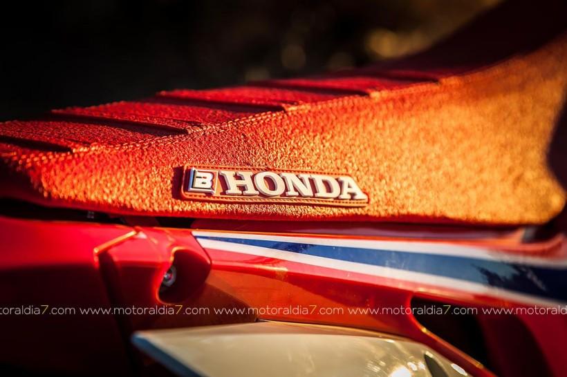 Gama Honda CRF250R Enduro