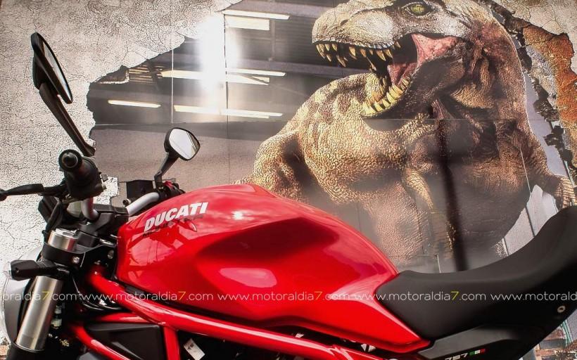 Monster 797. La atracción de lo sencillo
