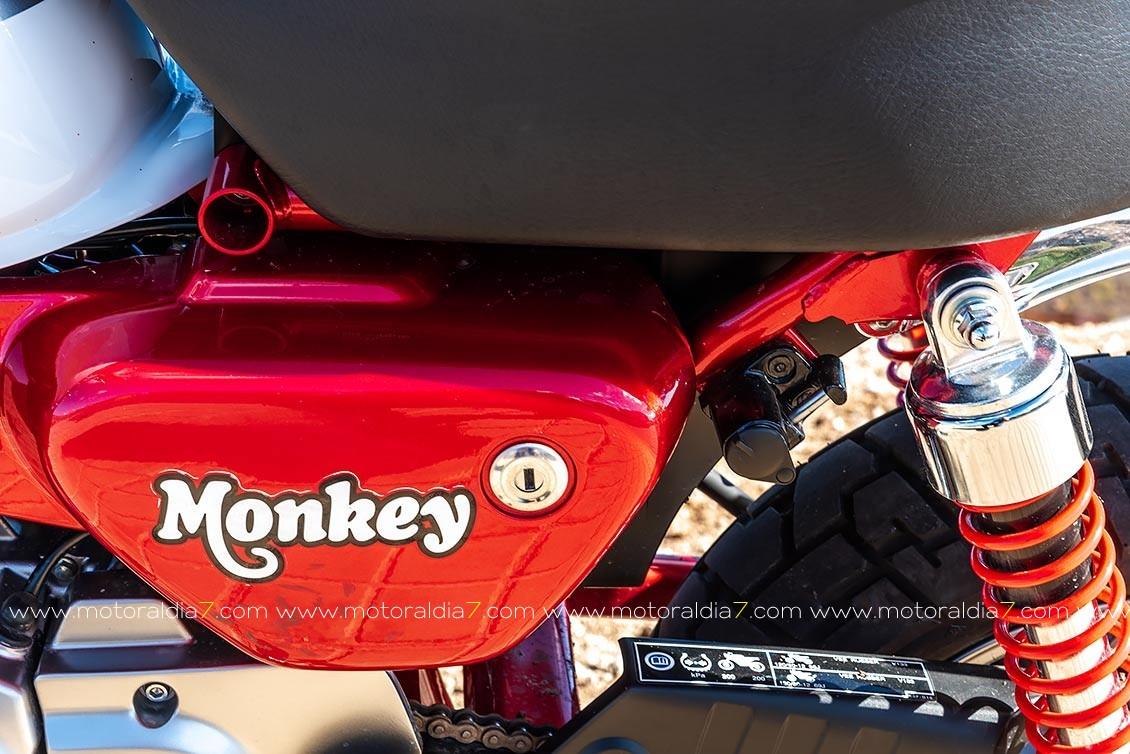 Las medidas de la monkey son de 1710mm de largo, 755mm de ancho y solo 1020mm de alto